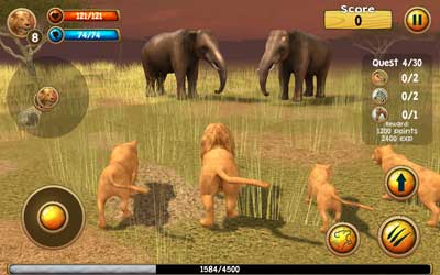 Wild-Lion-Simulator-1
